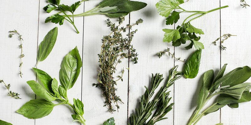10 herbes contre la chute de cheveux